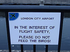 Cartel del aeropuerto capitalino.