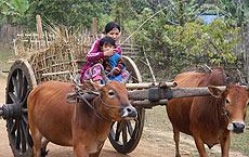 Madre e hijo en su carreta de bueyes. / Foto: F.L.S.