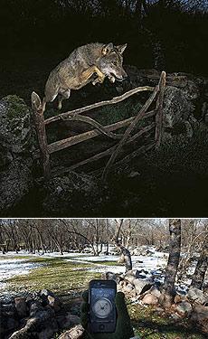 Arriba, la foto 'fraudulenta' de José Luis Rodríguez. Debajo, Imagen que desenmascaró a Rodríguez, en la que se ve un GPS con las coordenadas del escenario de la foto.