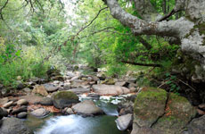 La Pedrosa y el río Rubagón. / F. P.